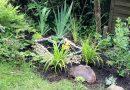 Meine Gärten – Home sweet home